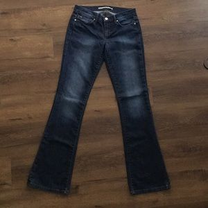 Joe's Jeans Rocker in Alba Wash